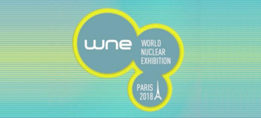 WNE's New Spotlight Feature